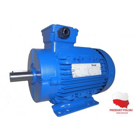 Silnik elektryczny 3Sg802B-IE2 Silnik elektryczny 3Sg-80-2B-IE2