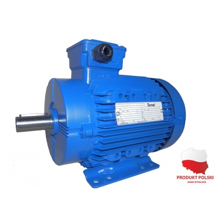 Silnik elektryczny 3Sg112M2-IE2 Silnik elektryczny 3Sg-112M2-IE2