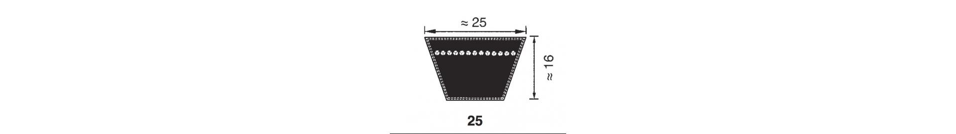 Pasek Klinowy H25